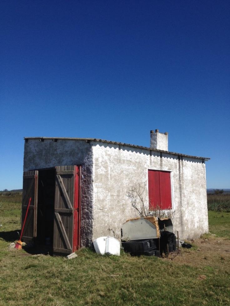 expresso patagonia freitas 14.jpg