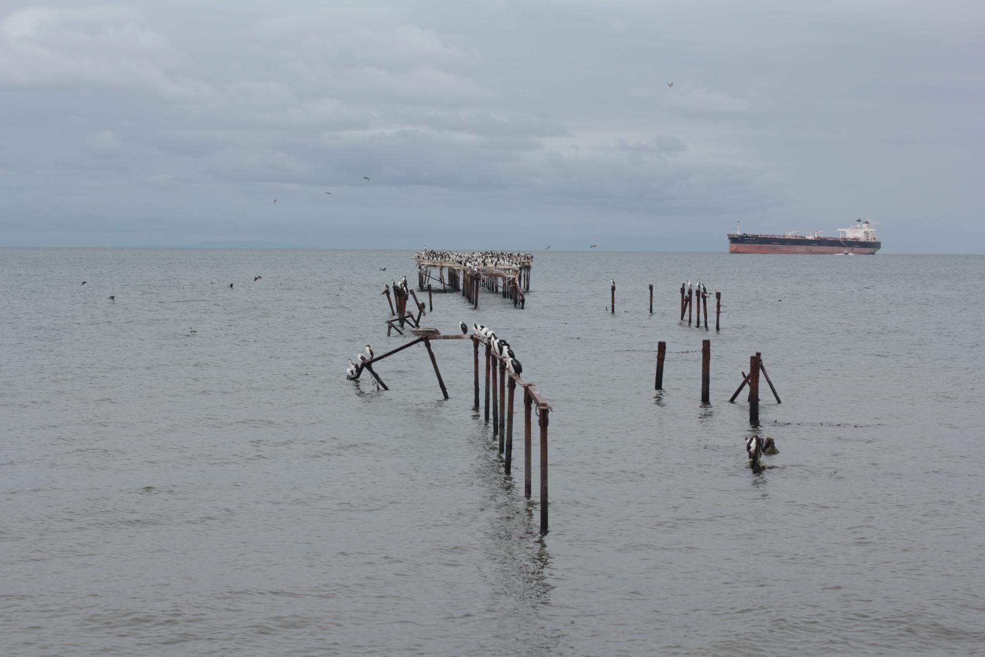Expresso Patagonia 66
