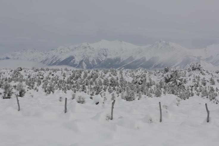 Expresso Patagonia 05