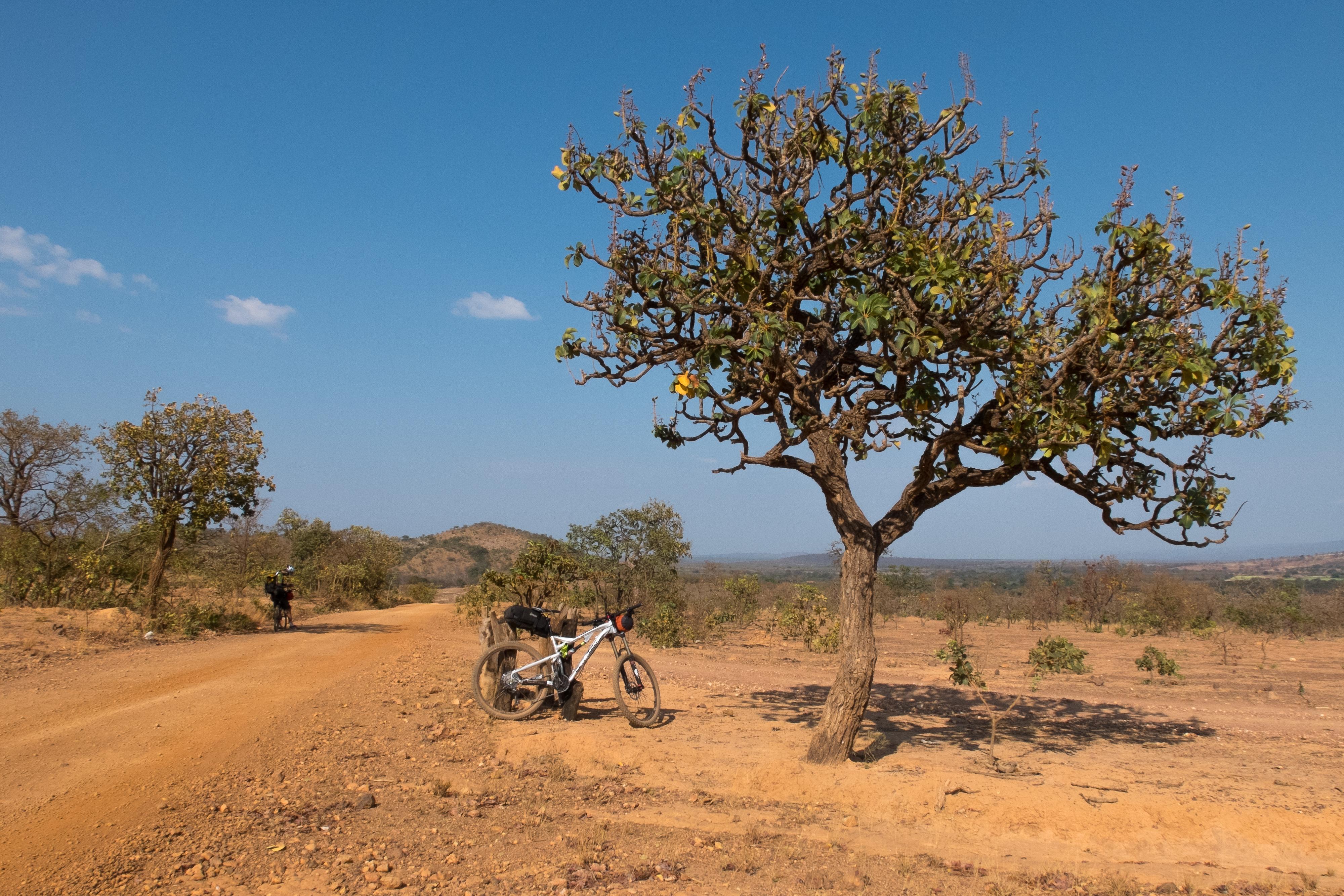 bikepacking sempre vivas serra do espinhaço foto arturo vieira (22)